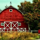 The Red Barn by Ann  Van Breemen
