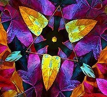 Leaf Triangle by Floyd Hopper