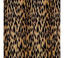 Leopard Phone Case by bhm57