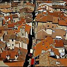 """ The Rooftops of Millau"" by Malcolm Chant"