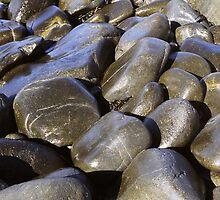 Seastones, East Coast, Tasmania by Alister A Mackinnon