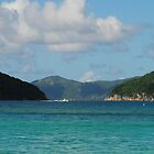 The Virgin Islands by Shaun  Gabrielli