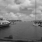 Auckland Harbour by lezvee