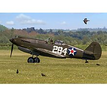 Warhawk with Magpies Photographic Print