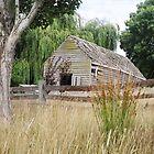 Rustic stable, Hagley, Tasmania by Alister A Mackinnon