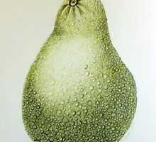 Avocado by Michelle Pullen