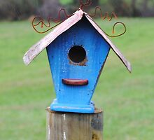 Blue Bird House by Suleyman Anadol