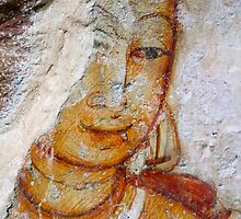 The Sigiriya Collection  by darkydoors