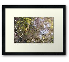 Welcome To My Parlor Framed Print