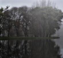 Fog's arrival by fodorpetya