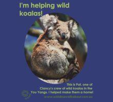 I'm helping wild koalas - Pat by Echidna  Walkabout