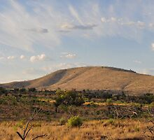 Pilanesberg Panoramic by Richard Davis