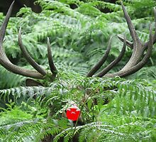 Rudolph in Camouflage by Debsonthesofa