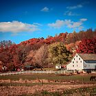 Tuscarawas Valley in the fall by Andy Donaldson