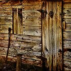 Old Barn Door by PineSinger