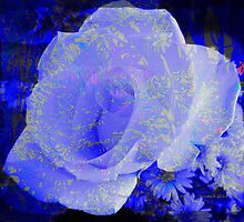 Blue Rose by Kathie  Chicoine