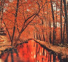 autumn river by mitchlx