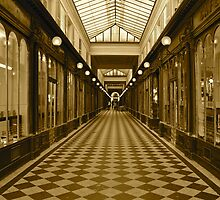 Le Paris Arcade 2013  by spregellio