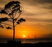 Sidney Lanier Suspension Bridge at Sunset by Douglas Hamilton