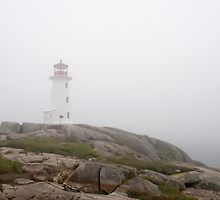 The Lighthouse And Rock At Peggy's Cove by Gary Chapple