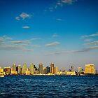 San Diego Skyline by Douglas Hamilton