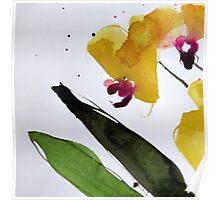 Provigo Orchid #1 Poster