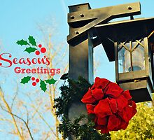 Season's Greetings - greeting card by Scott Mitchell