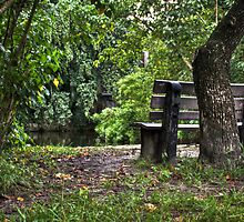 Bench in the Park by Kyle Irizarry