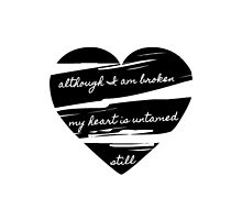 Although I am broken my heart is untamed still by 1DxShirtsXLove