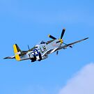 P51 Mustang by Mark Baldwyn