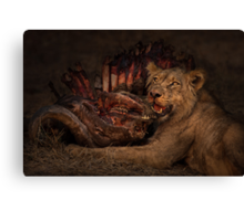 Life and Death in the Africa Bush Canvas Print