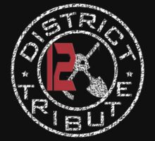 District 12 Tribute by krishnef