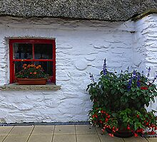 Traditional Irish Cottage by Fara
