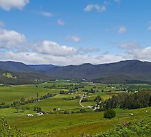 Farming district, Gunns Plains, Tasmania, Australia by Margaret  Hyde