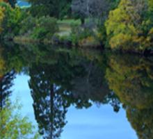 Reflections in the Derwent, New Norfolk, Tasmania Sticker