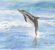 Spinner Dolphin by PamelaMeredith