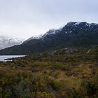 Rugged Tasmania by SHappe