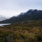 Rugged Tasmania by SHappe
