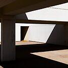 Shadowplay by Simon Harrison