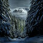 It's A Cold World ~ Three Fingered Jack ~ by Charles & Patricia   Harkins ~ Picture Oregon