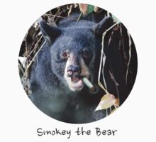Smokey the Bear by Darren Quarin