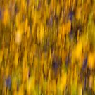 Abstract of Autumn Gold by DavidHornchurch