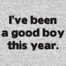 Good Boy This Year by Merwok