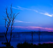 Misty Lake at Dawn by Delmas Lehman
