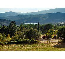 Arezzo, Tuscany (near Castelnuovo) #003 Photographic Print