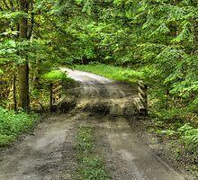 Country Road by Geoffrey Coelho