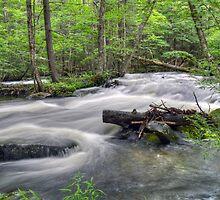 Fall River Rapids No. 2 by Geoffrey Coelho