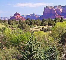 South of Sedona - Arizona - USA by TonyCrehan
