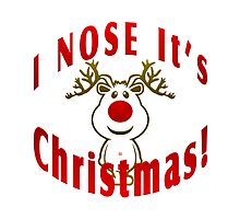 Christmas Nose by Vy Solomatenko