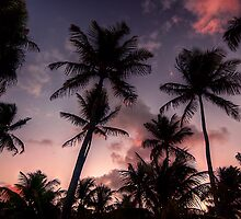 Sunrise in the Florida Keys by James Hoffman
